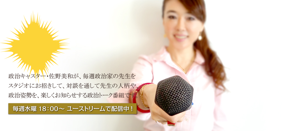 みわちゃんねる突撃永田町